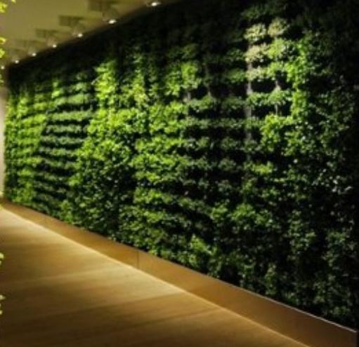 Indoor green walls system