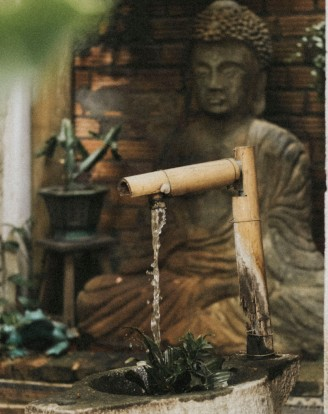 Water flow from a pipe made of bamboo below which is a plant, that represents a traditional water conservation method