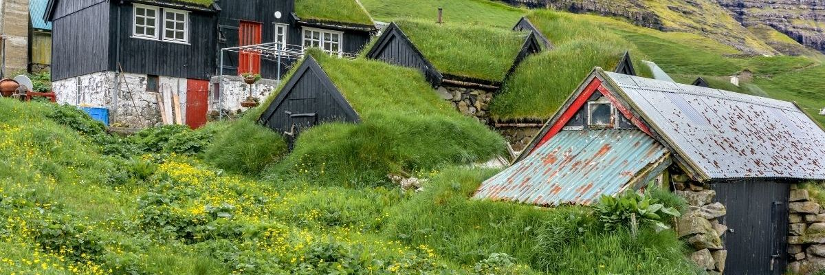 Green roofs - Types, features and advantages