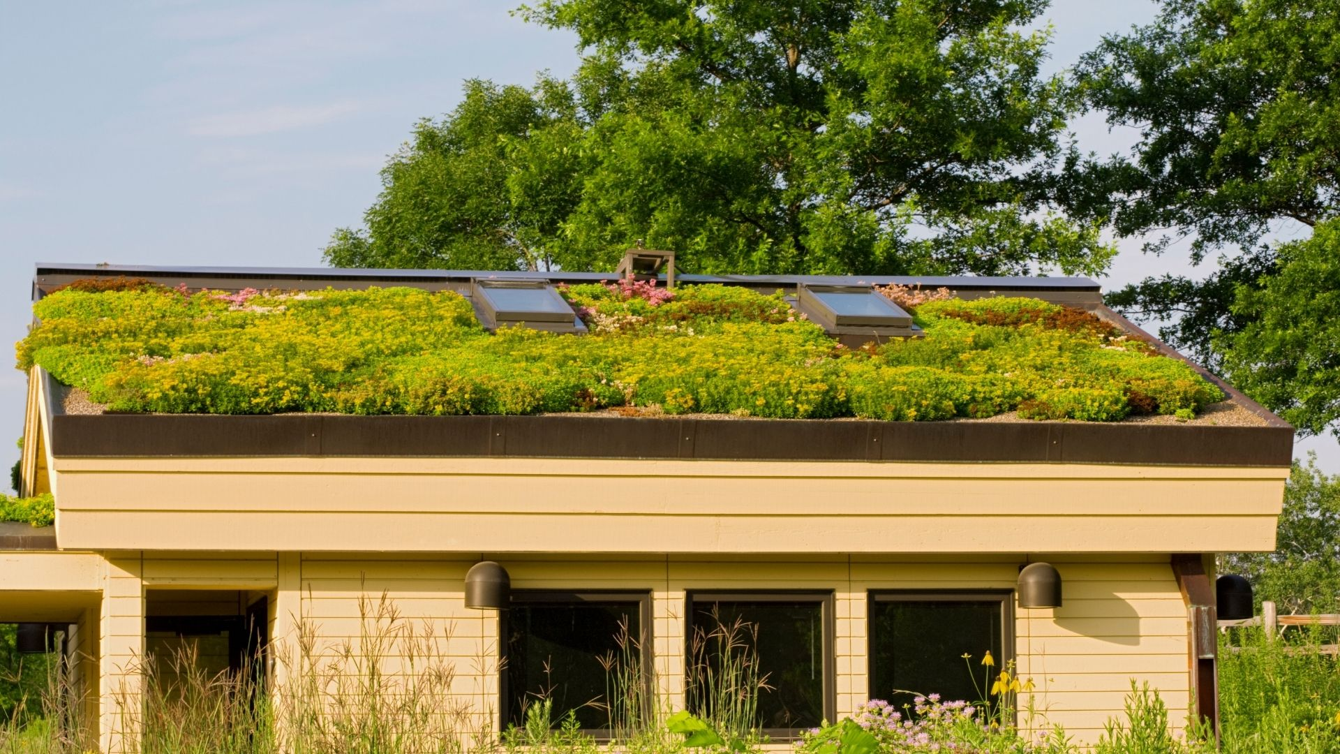 Intensive Green Roofs